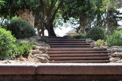 Stairs in the Park Stock Photos