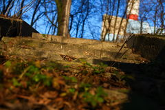 Stairs in the park. In Europe Royalty Free Stock Images