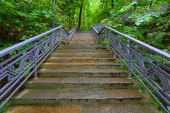 Stairs in park Royalty Free Stock Images
