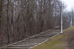 Stairs in a park during winter. Some stairs in a park during winter royalty free stock photography