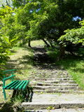 Stairs in parkland. Beautiful stairs in parkland rising to the top among the trees, Sochi city Stock Photos