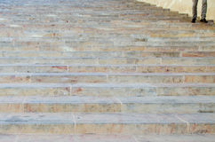 The Stairs at the Parliament House Stock Images