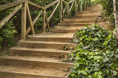 Stairs path on a green park Stock Images
