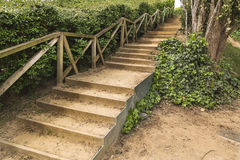 Stairs path on a green park Royalty Free Stock Image