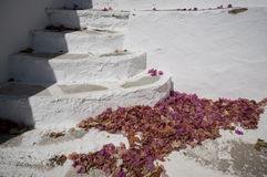 Stairs and petal. In the corner of the Lefkes, a small town in Paros, Greece Stock Photo