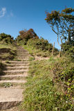 Stairs in Port Isaac Royalty Free Stock Image