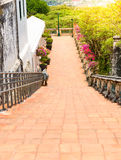Stairs and railings made of cement retro style Royalty Free Stock Photo