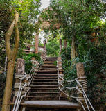 Stairs in the rainforest. Thailand Royalty Free Stock Photo