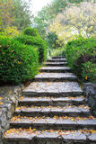 Stairs in the Ramble Stock Photography