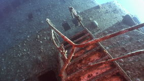 Stairs on Salem Express shipwrecks underwater in the Red Sea in Egypt. Extreme tourism on the ocean floor in the world of coral reefs, fish, sharks stock footage