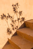 Stairs and shadows Royalty Free Stock Photo