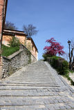 Stairs from Sighisoara Stock Image