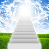 Stairs in sky with green grass, clouds and sun Stock Images