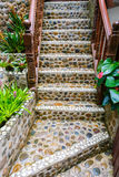 Stairs stone path in garden Royalty Free Stock Photo