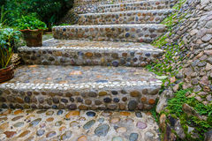 Stairs stone path in garden. A stairs stone path in garden Royalty Free Stock Photography