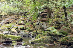 Stairs of stones in Valley of River Bode Stock Image