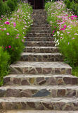 Stairs surrounded by beautifull flowers. Rock stairs surrounded by beautiful flowers Royalty Free Stock Photo