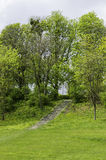 Stairs in SzelÄ…gowski park. Stairs between trees in Park Szelagowski in Poznan, Poland stock photography
