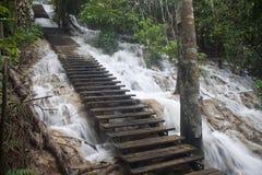 Stairs at Tat Kuang Si waterfall Royalty Free Stock Images