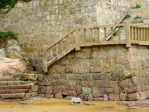 Stairs on Thousand step sand beach Stock Images