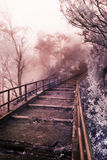 Stairs to heaven. It's a stair leading to Mountain Bromo, East Java, Indonesia. The misty fog gives the mysterious and yet tantalizing people to explore even Royalty Free Stock Photography
