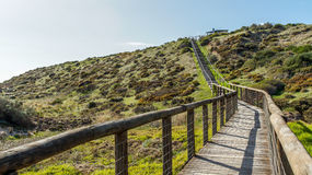 Stairs to heaven. Long stairs up to the hill surrounded by green shrubs Royalty Free Stock Photography