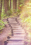 Stairs to heaven Royalty Free Stock Photos
