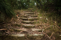 Stairs to heaven Royalty Free Stock Images
