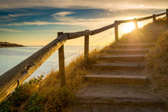Stairs to heaven. Stairs up on the hill with sunset flares Royalty Free Stock Photo