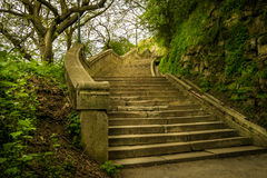 Stairs to the hill 2. Stock Photography