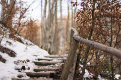 Stairs to the hill Stock Photos