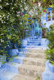 Stairs to home. A blue colored house facade,a stair to the front door and lots of beautiful plants and flowers Royalty Free Stock Photo