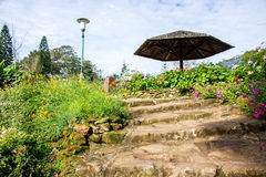 Stairs to journey. Bhubing Rajanives Palace, Chiang Mai, Thailand Royalty Free Stock Images