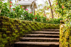 Stairs to journey. Bhubing Rajanives Palace, Chiang Mai, Thailand Stock Photography