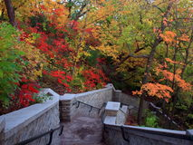 Stairs to Minnehaha waterfall. In Minneapolis park in fall season Royalty Free Stock Photos