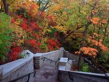 Stairs to Minnehaha waterfall Royalty Free Stock Photos