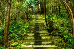 Stairs to Mountain Top of Shisun royalty free stock photos