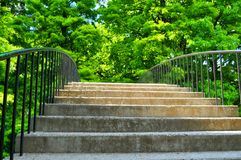 Stairs to nature Stock Photo