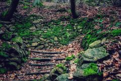 Stairs to nature Royalty Free Stock Photo