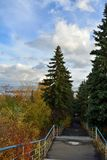 Stairs to the river with tall fir trees and colorful bushes. Beautiful autumn scene in the park.  royalty free stock photography