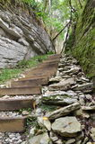 Stairs to the Tiso boxwood grove. Sochi, Russia Royalty Free Stock Photography