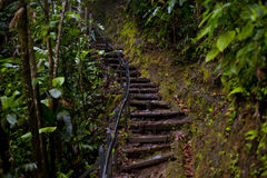 Stairs to the top Royalty Free Stock Photo