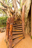 Stairs to the tree house Royalty Free Stock Photos