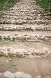 Stairs to walking up the mountain. Royalty Free Stock Photos