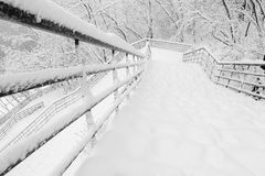 Stairs to winter Park. Stairs in a Park covered with snow Royalty Free Stock Photography