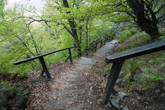 Stairs on the tourist trail Royalty Free Stock Photography