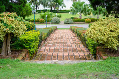 A stairs at trail in park. Beautiful Stock Image
