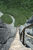 Stairs on the trail Royalty Free Stock Image