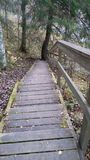 Stairs. Where we go Stock Photo