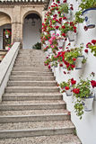 Stairs whith geraniums. Stairs with geraniums in a Andalusian patio Royalty Free Stock Photo